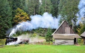 Waldbahn fährt durch die slowakischen Beskiden an kleiner Holzhütte vorbei