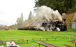 Mit Baumstämmen beladene Schmalspurbahn dampft durch ein Fußball-Stadion in den Slowakischen Beskiden