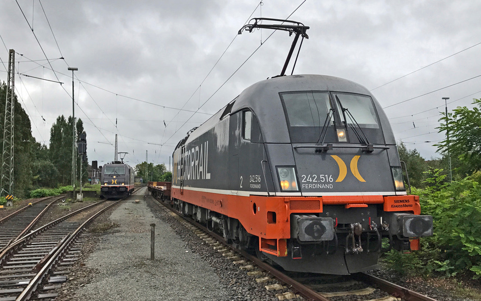 Hector Rail 242.516 Ferdinand unterwegs