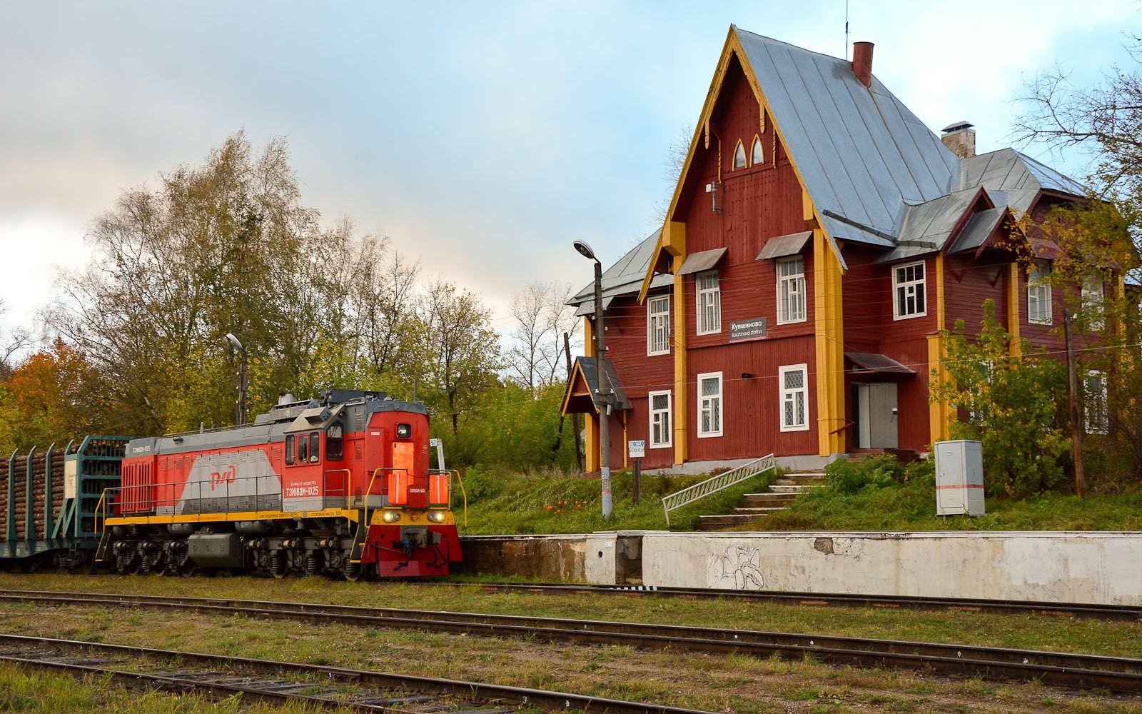 ©Foto: railmen Steffen Mann | TEM18DM-1025 mit Nahgüterzug im Bf Kuwschinowo | 28.09.2018