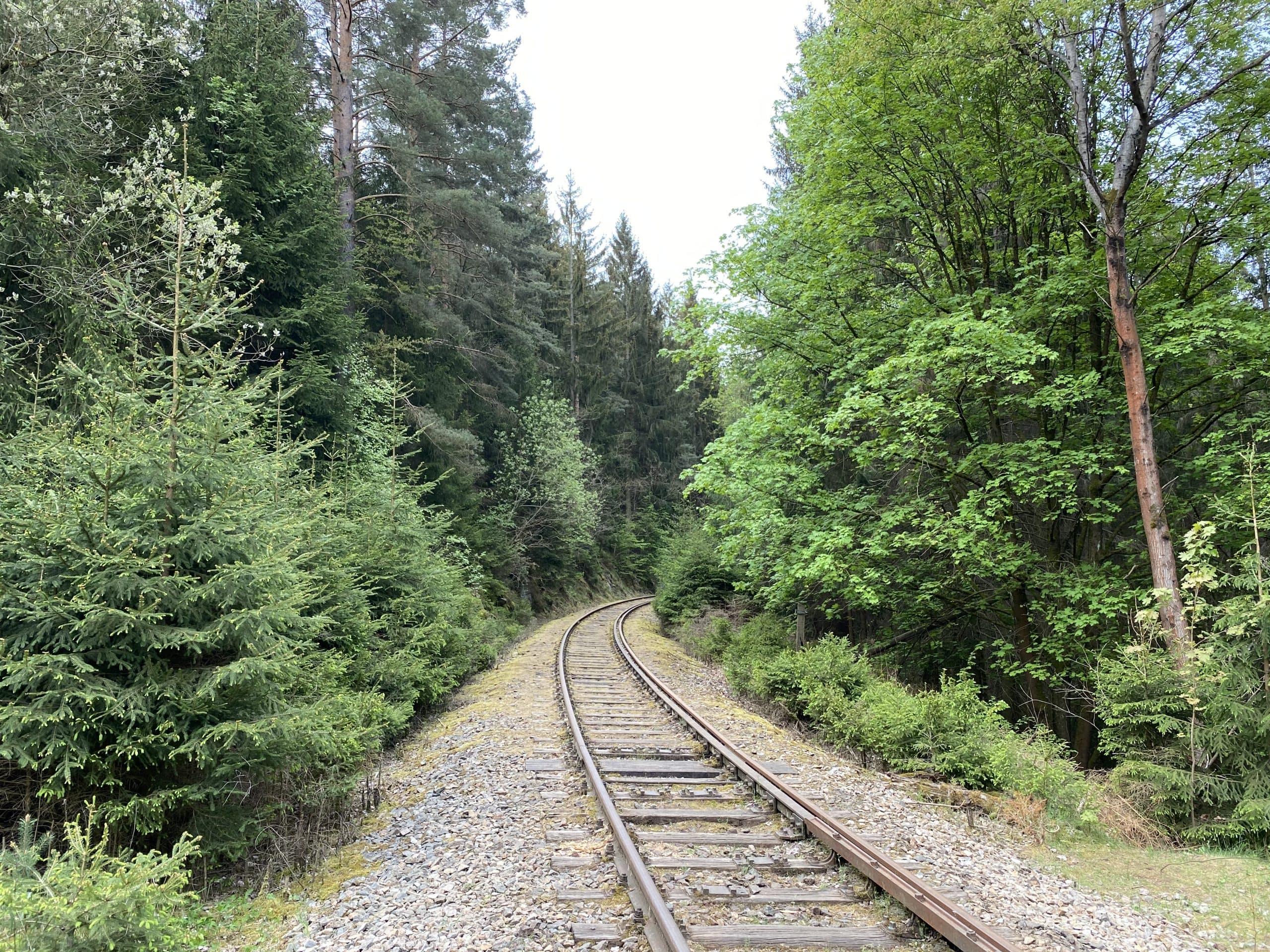 ©Foto: Jan Krehl   railmen   Gleise im Wald von Ziemestal