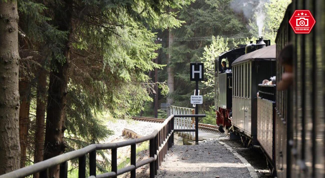 railmen unterwegs mit der Pressnitztalbahn